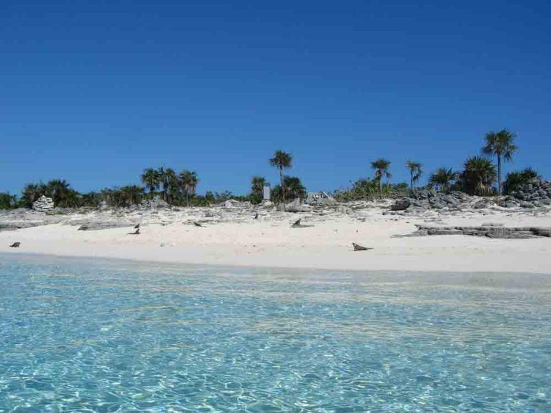 Bahamas_26-149-800-600-80.jpg