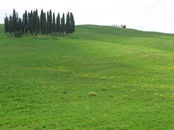 48WebGallery_Italy2011-296-800-600-80.jpg