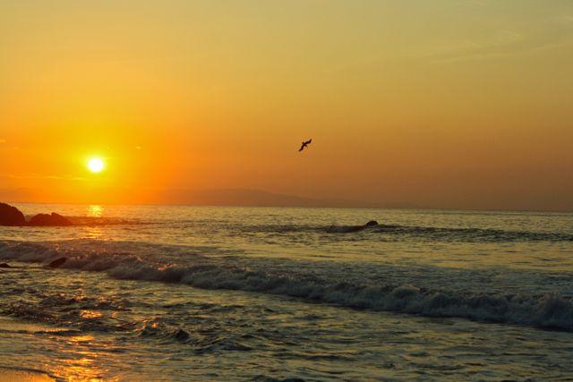 Costa Rica057.jpg