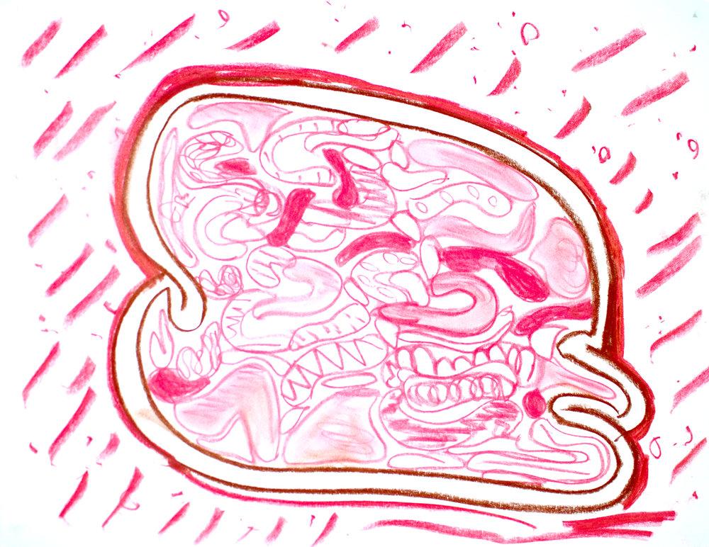 28 Lester Alyssa Brain Food.jpg