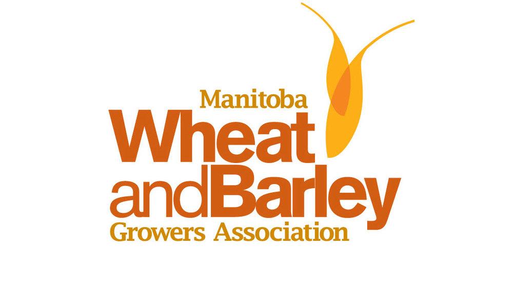 Manitoba Wheat and Barley.jpg