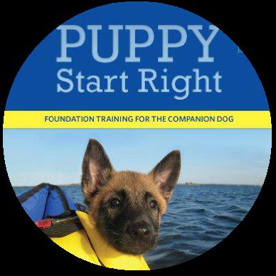 best puppy training book