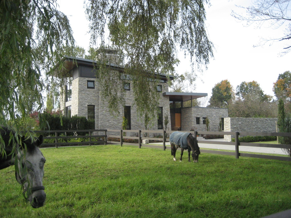 4 - Exterior w: Horses.JPG