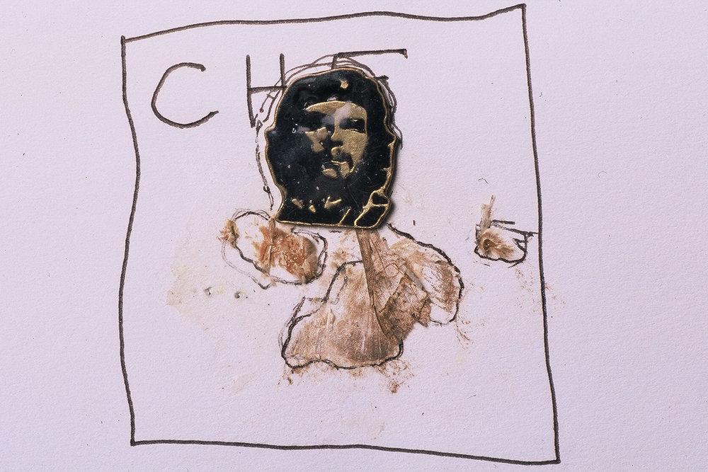 Che Moth - Moth found on Che Guevara's Desk
