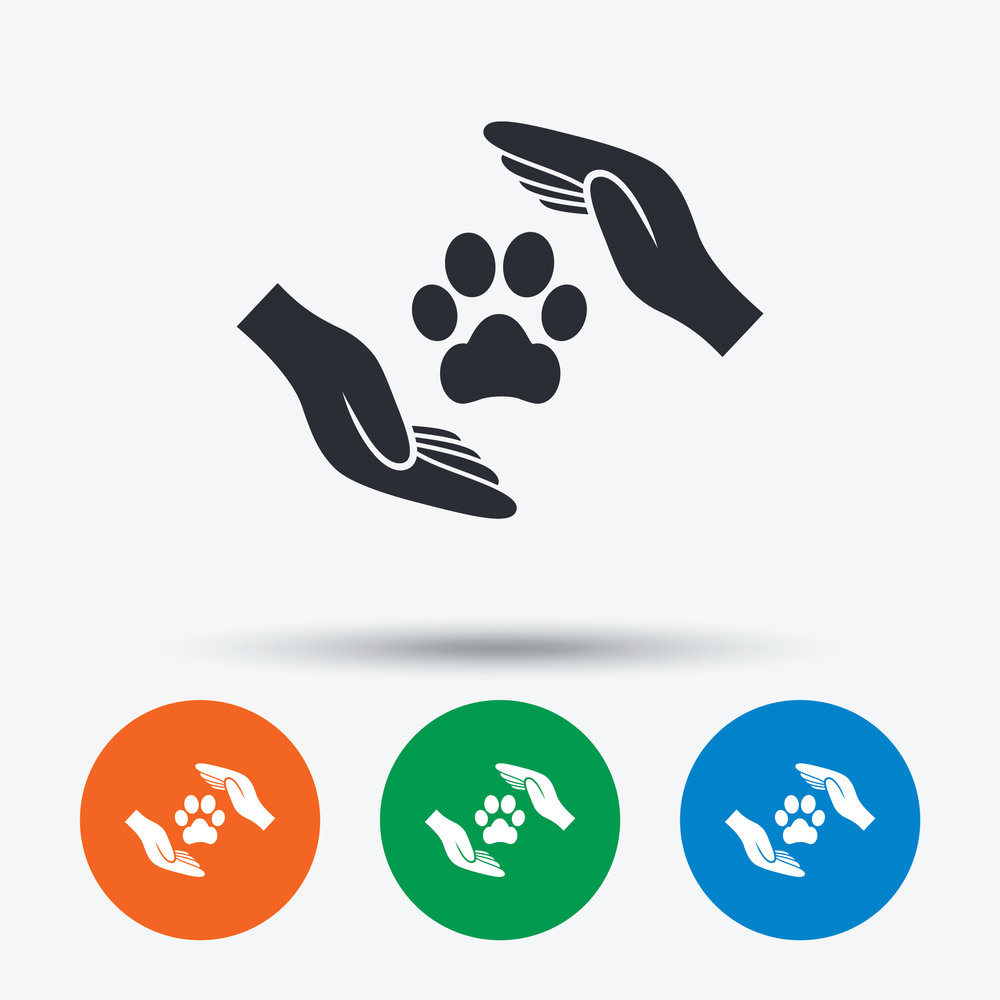 Pet Insurance - Emergency pet visits can be costly, protect yourself now and be prepared for those unexpected events. Profits will be used to lower the cost of healthcare for veterans and their families.