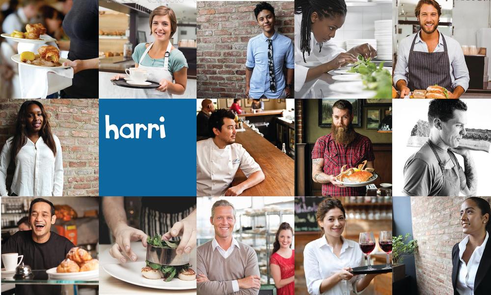 Harri-Grid-v2.jpg