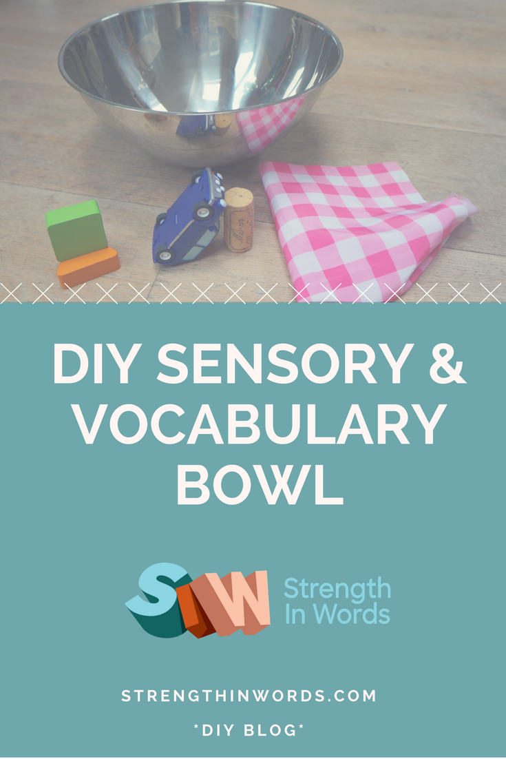 DIY BLOG Sensory & Vocab bowl Pinterest.png