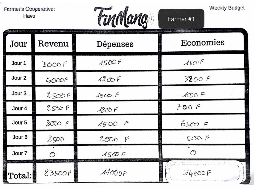 Operation Togo: Budgeting Test Analysis .001.jpeg