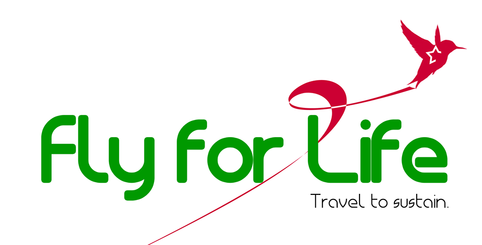 February 2018 - Fly For Life | Havu, Togo20+ Students