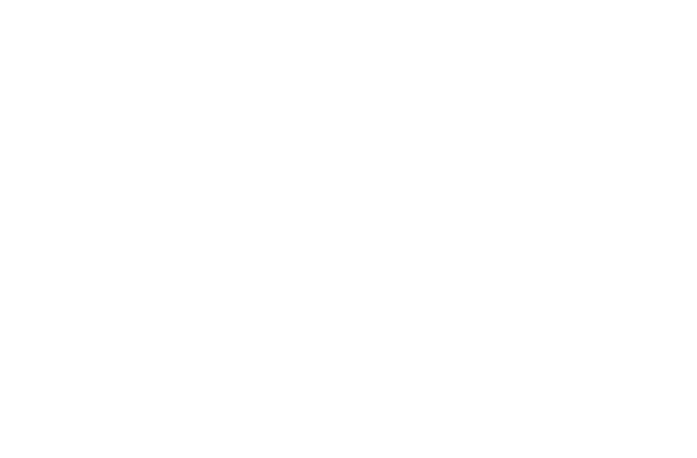 logo-white (3).png