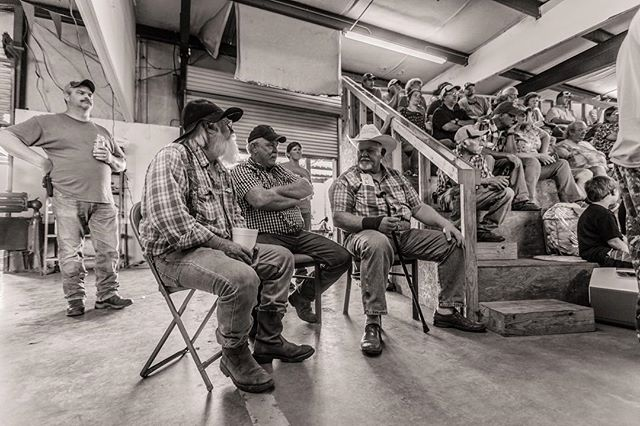 Squad Goals #goatauction #cowboys #south #goats #socialdocumentary #photography #canon