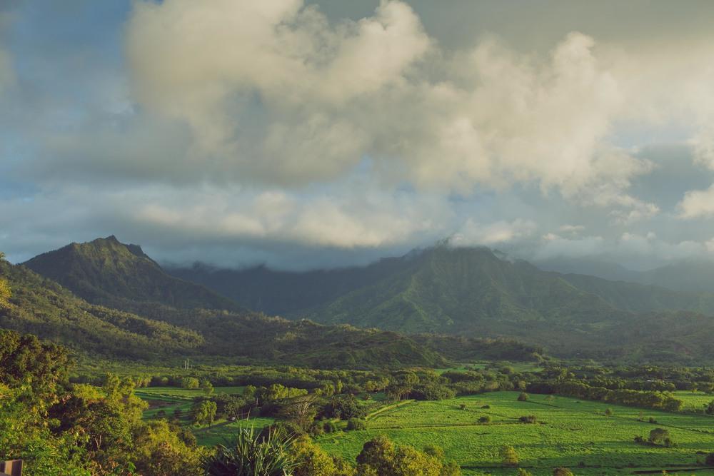OSR_Kauai.jpg