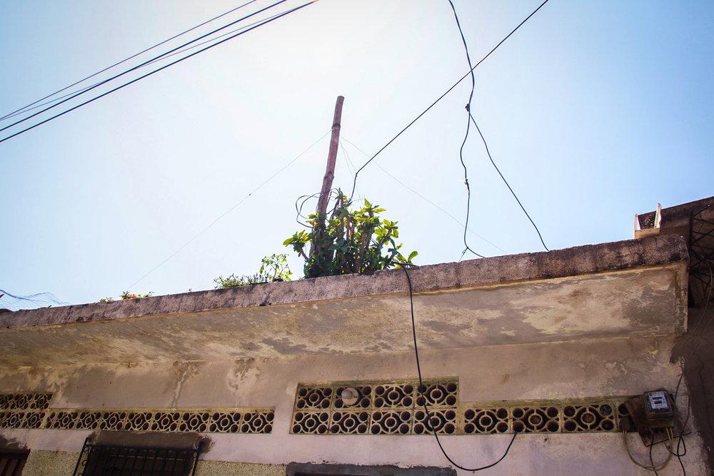 El Salvador_7.jpg