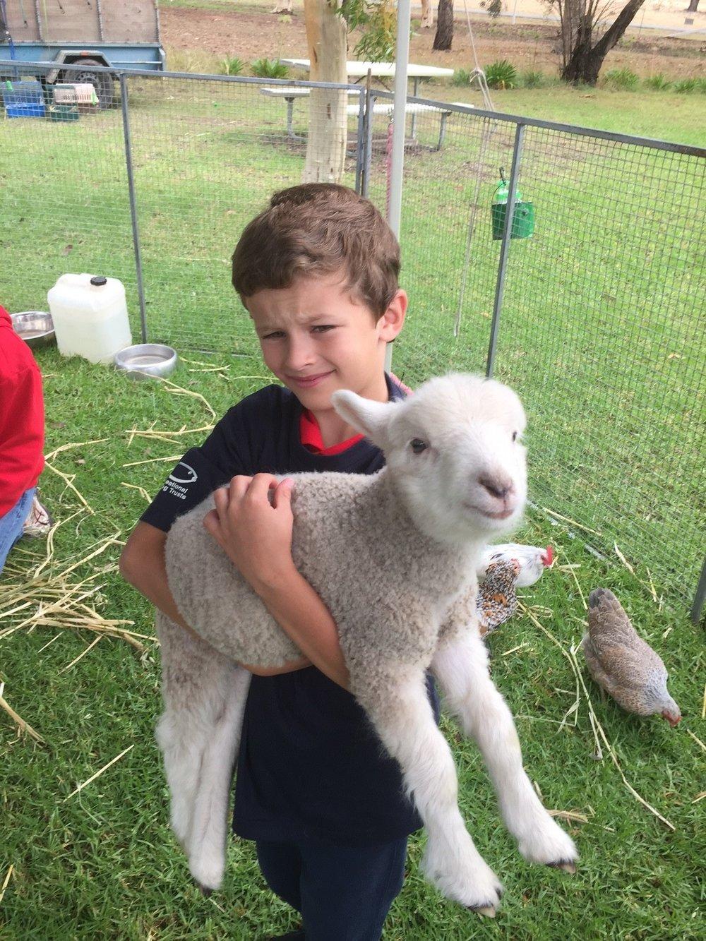 Caleb & lamb.jpg