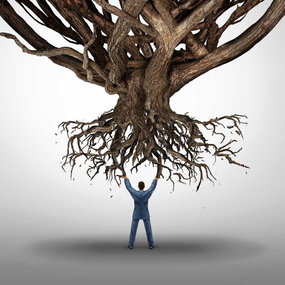 bigstock-Uprooting-And-Power-Concept-107700800.jpg