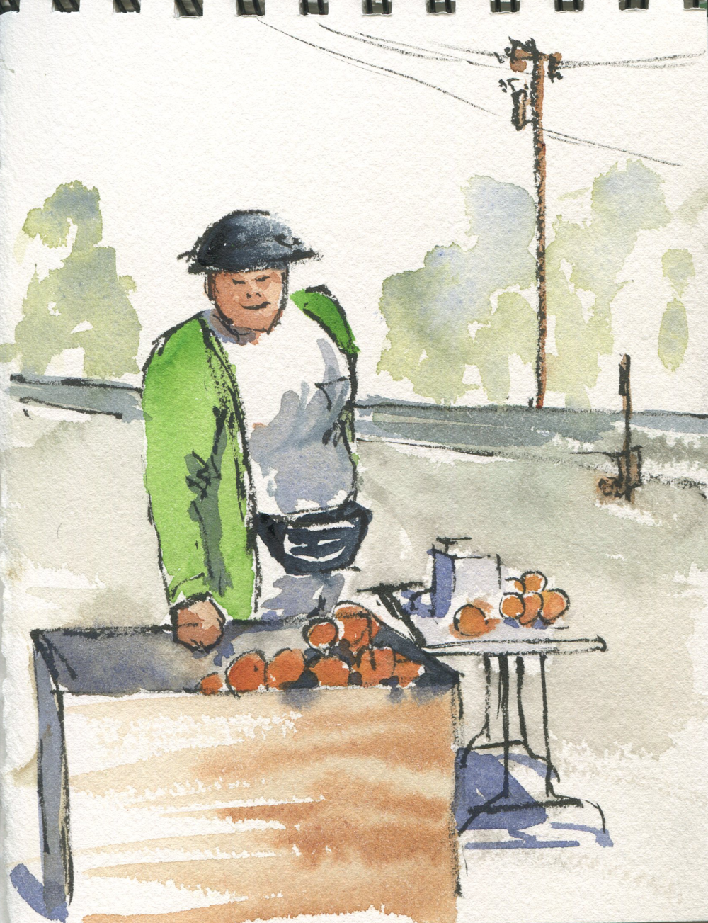 The lady selling oranges at the grove