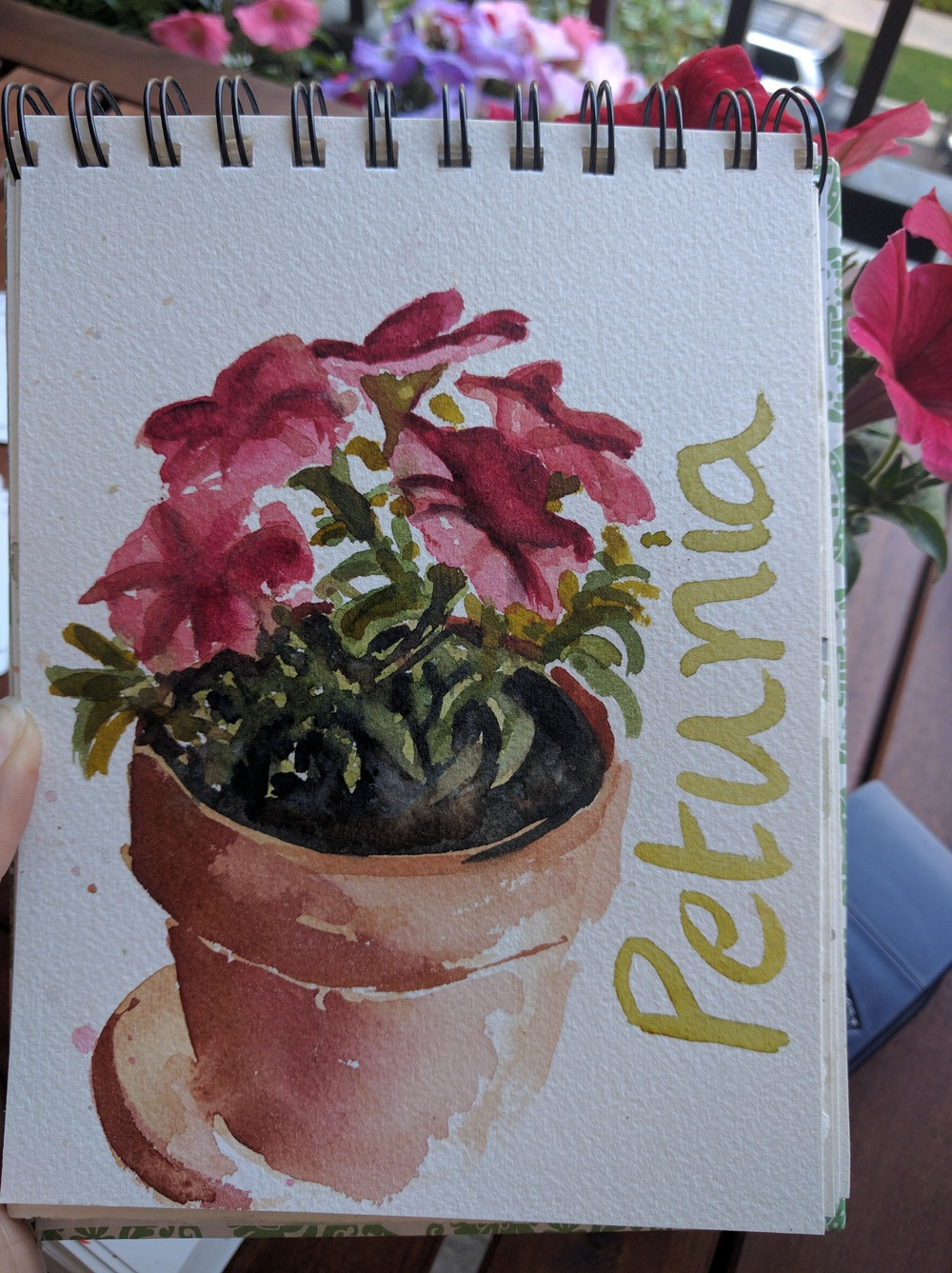 Petunias in watercolor