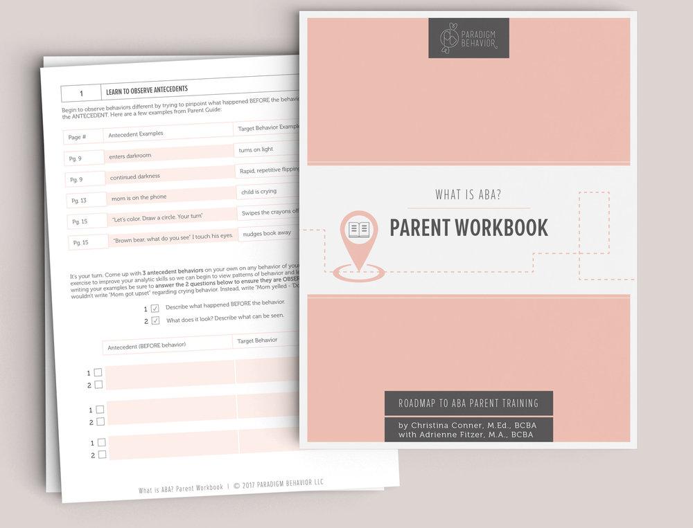 ABA - Workbook.jpg
