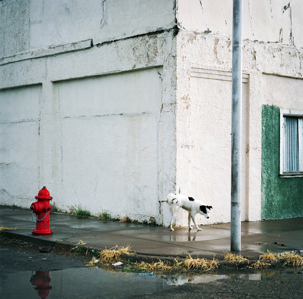 Allison V. Smith, Fire hydrant. Marfa, Texas, 2005