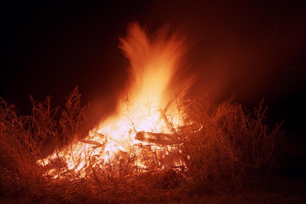 Darter_ bonfire.jpg