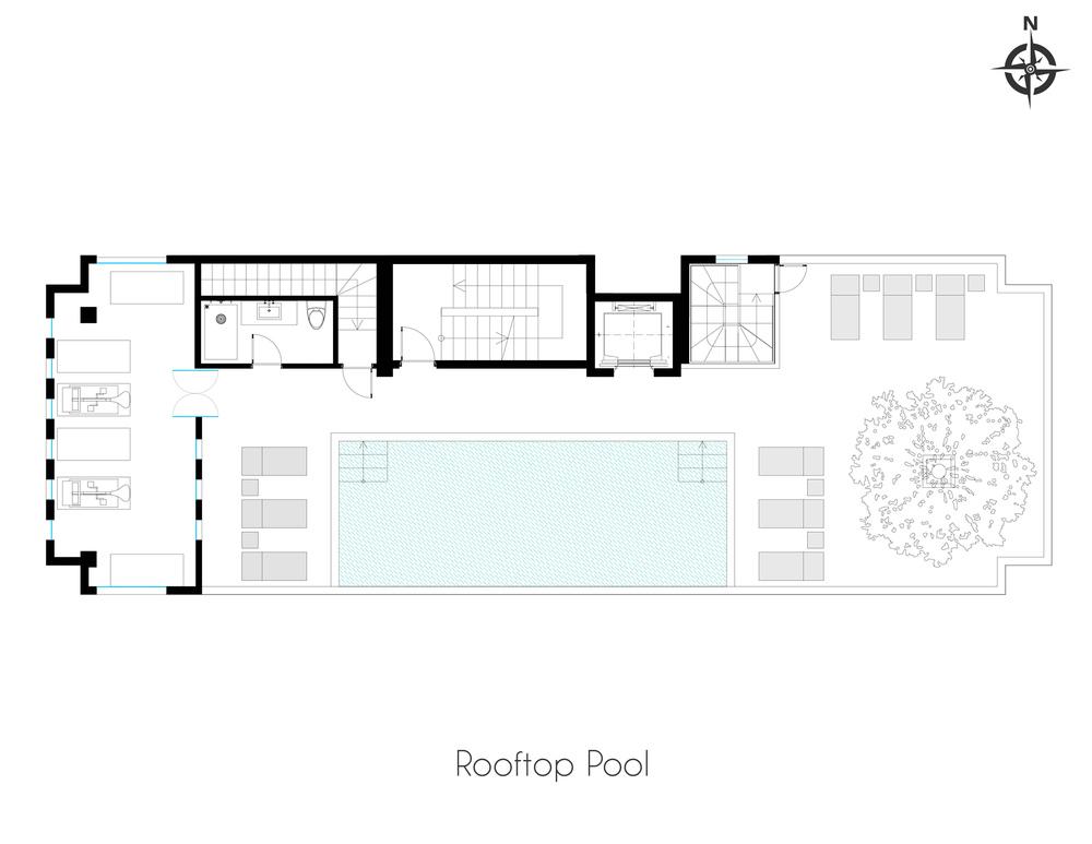 Rooftop Pool.jpg