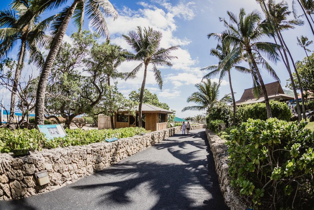 Hawaii(6)-17.jpg