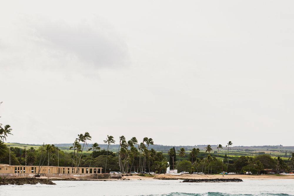 Hawaii(9)-63.jpg