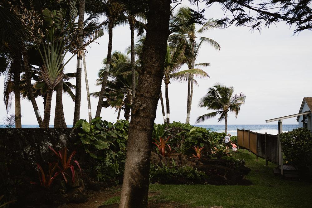Hawaii(10)-1.jpg