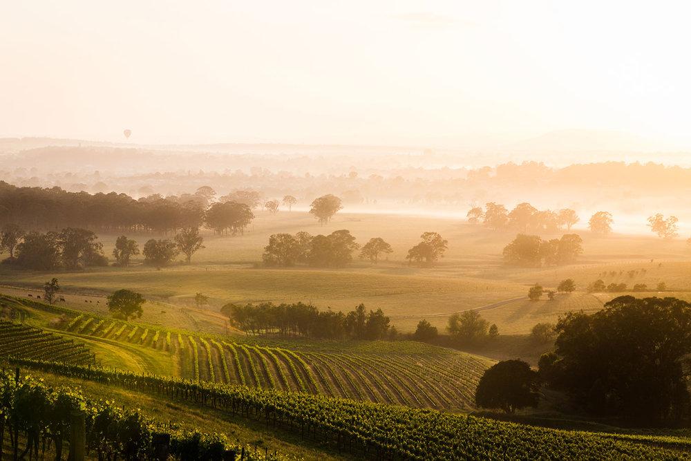 Hunter-Valley-wine-region-medium.jpg