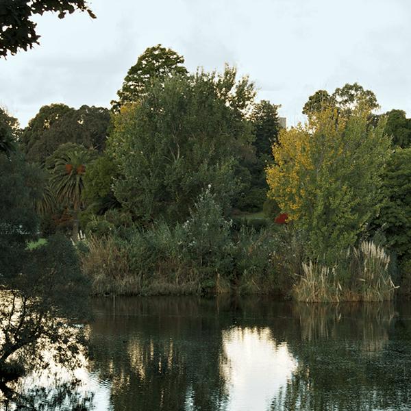 Surprise Lake Date - Coburg Lake.png