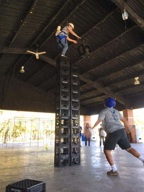 crate stacking champ already and she wasn't even finished