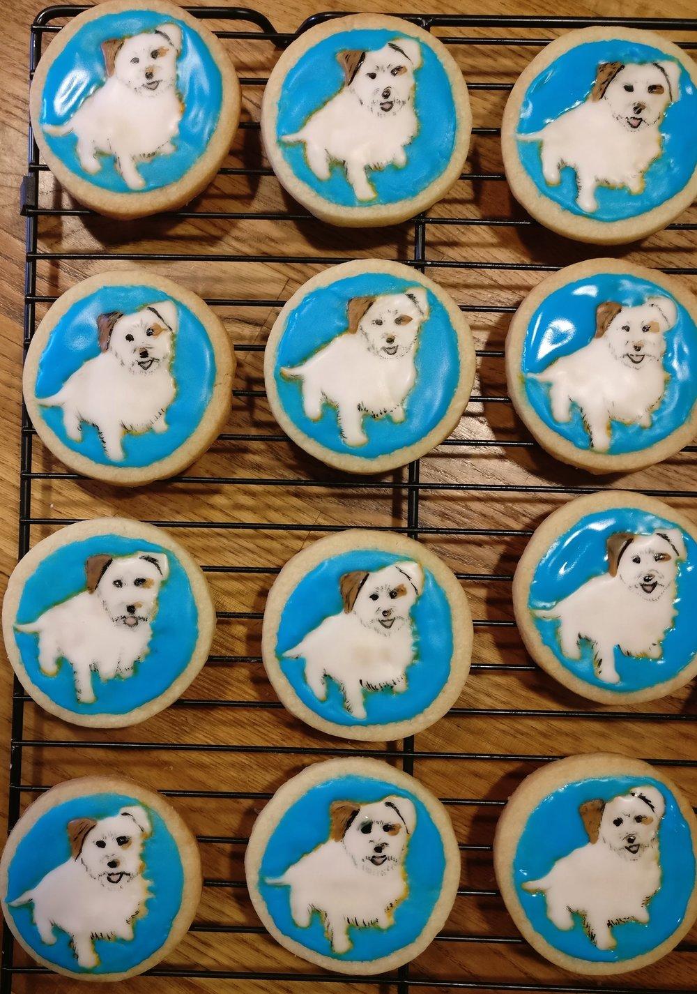 Puppy portrait cookies