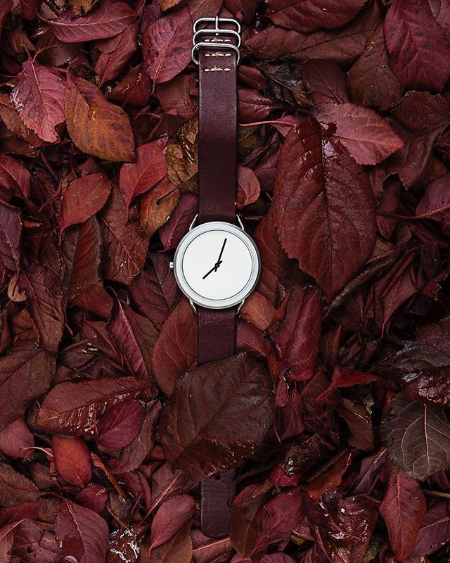 Leaf 2018 with a new watch 🍂 #vivalavario • • • • • • • #natostrap #natonation #watchphotography #tailored #mensstreetstyle #classydapper #dapperlydone #leather #watches #designer #minimal #style #mensfashion #watchoftheday #follow  #watchcollector #luxurywatch #wristgame #highsnobiety #mensstyle #menstyle #menwithstyle #jointhemvmt #instagood