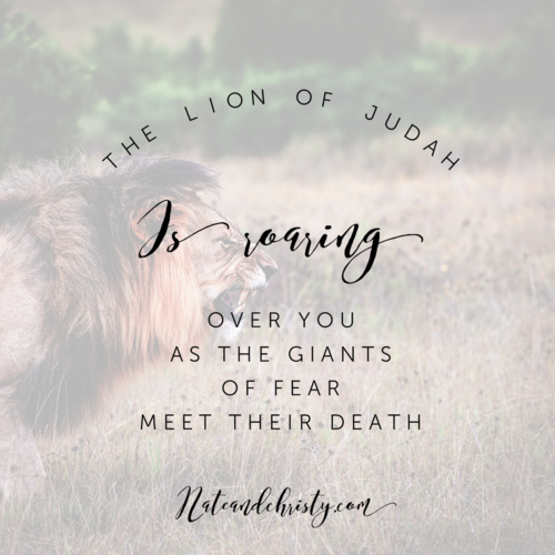 The Lion Of The Tribe Of Judah Is Roaring Over You Nate Christy