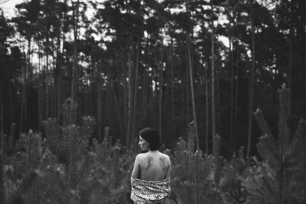 Studené ráno v lese, #2016