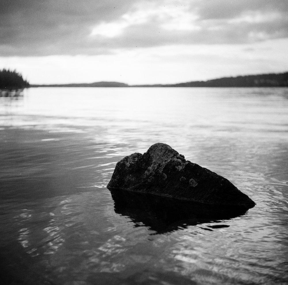 Finsko - poblíž Tampere (Yashica D, Ilford Plus 125)