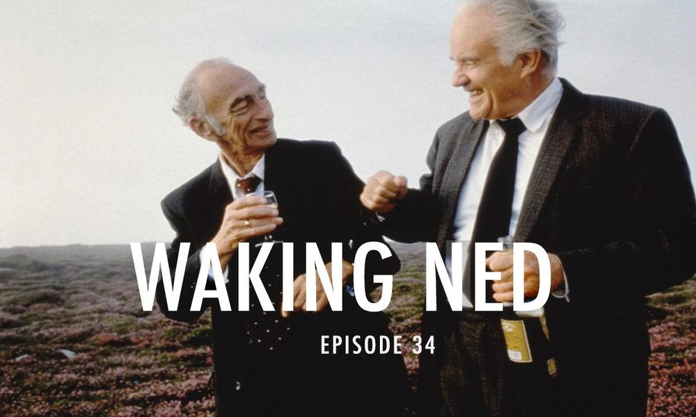 Waking Ned.jpg
