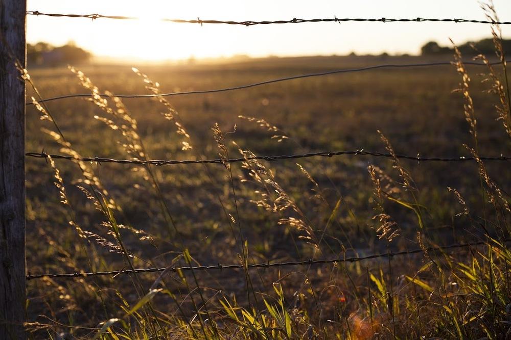 southdakota006.jpg
