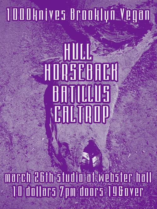 batillus_hull_horseback_caltrop_march2011_wordpress