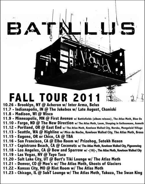 batillus_fall2011_web