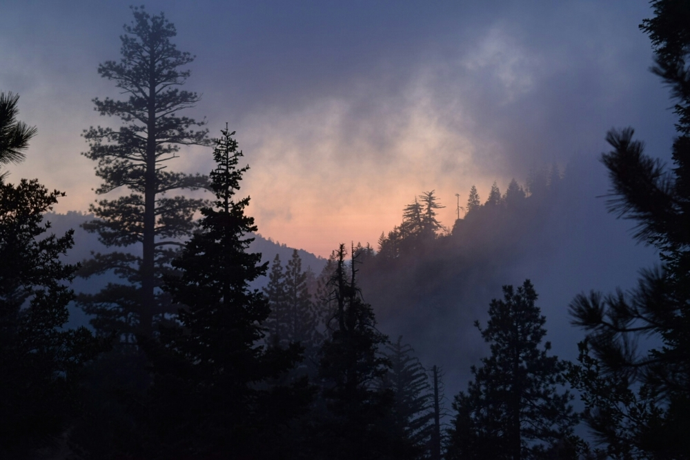 Sunset in the Angeles National Forest