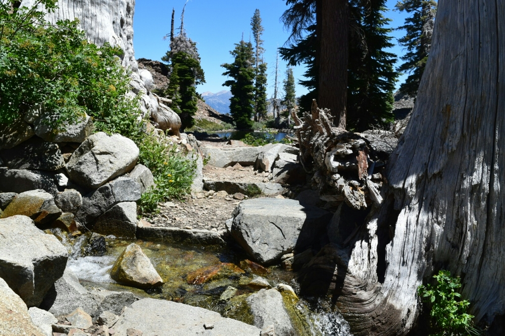 Creek crossing in the Desolation Wilderness