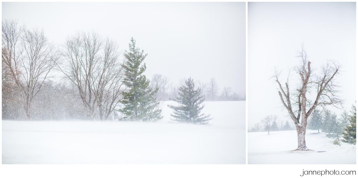 Snow-storm-wedding-day