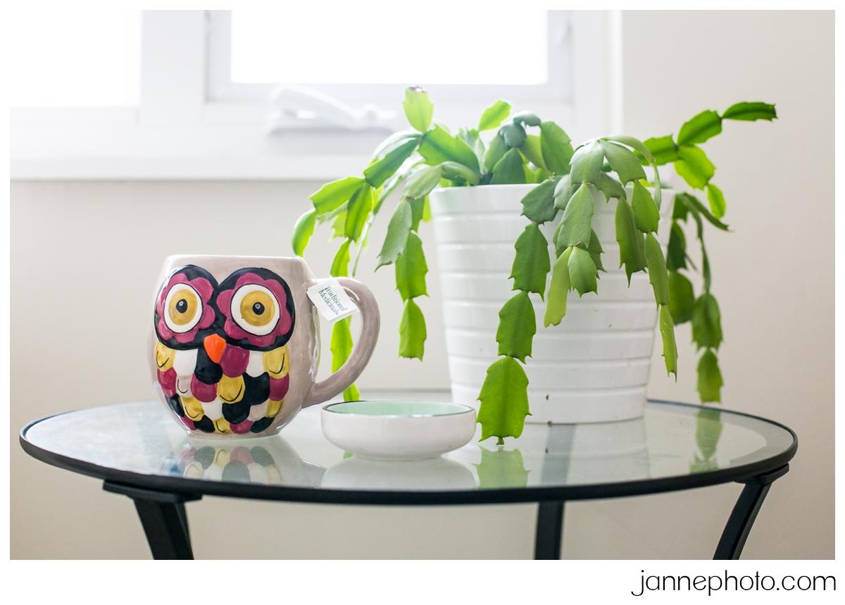 Owl-Mug-Cactus-Plant-Sick