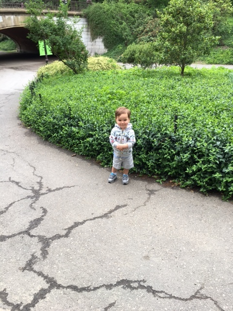 Little Max in Central Park (Upper West Side)