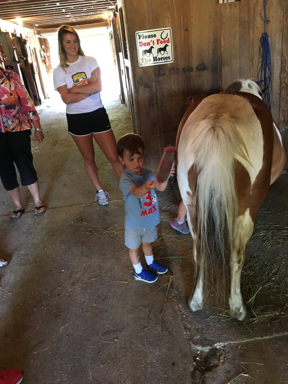 Looking after the ponies!