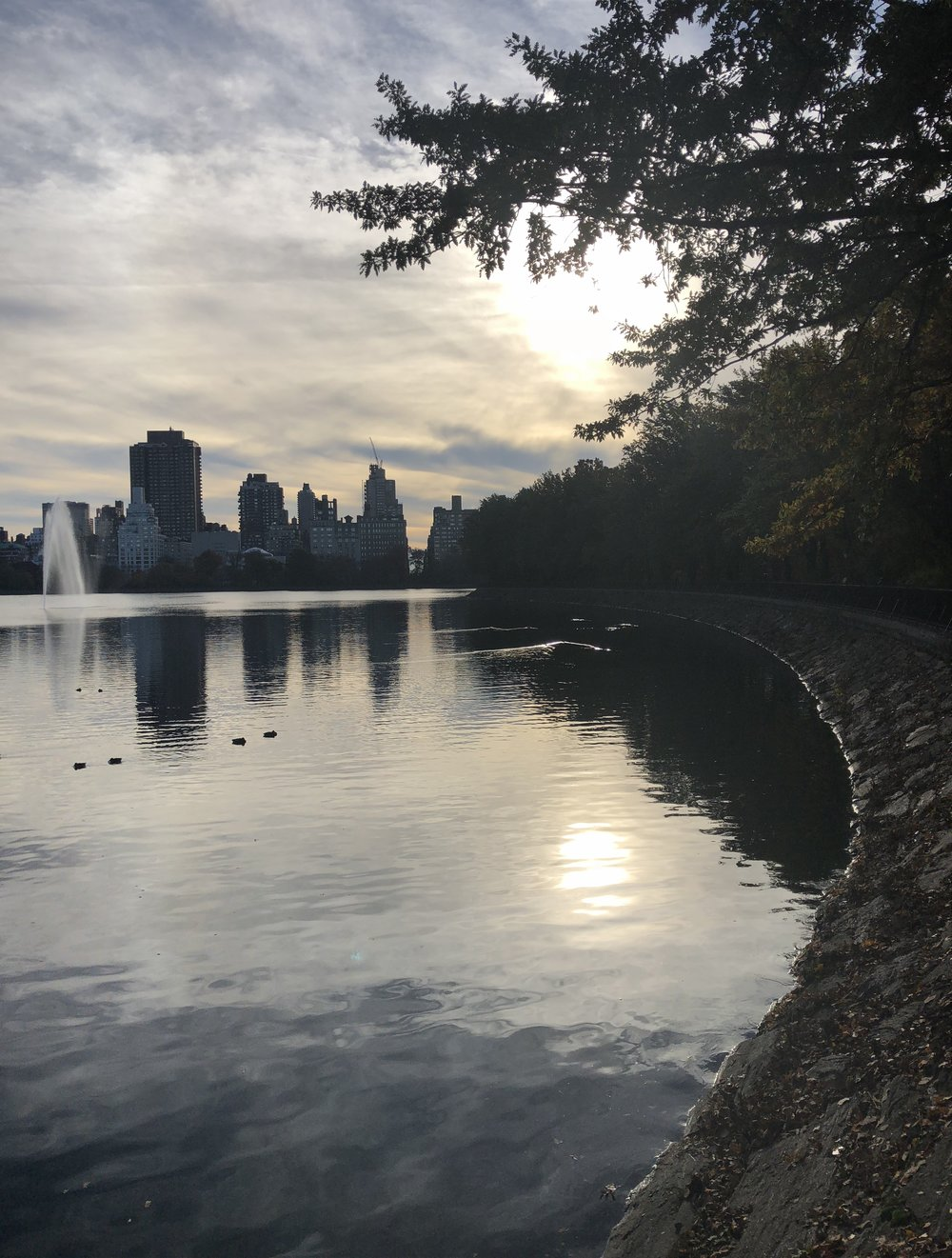 "Jackie Onassis Reservoir in Central park…the ""Bridle Path"" in the Park takes you to this awesome circular running/walking path. I love that its not pavement either!!"