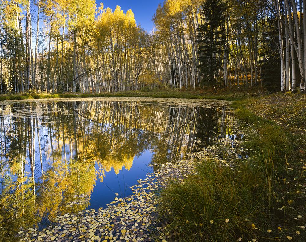 Kebler Pond