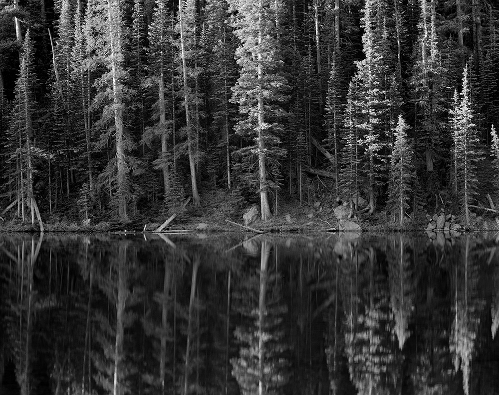 Dream Lake Reflections