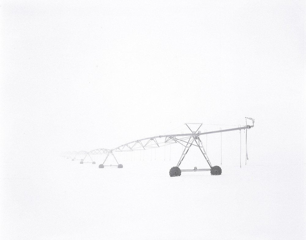 Pivot in the Fog